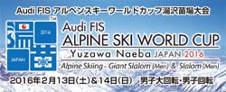 Alpine Ski World Cup in Yuzawa Naeba JAPAN 2016